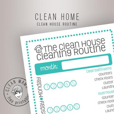 CLEAN HOUSE ROUTINE