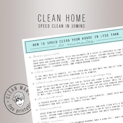 SPEED CLEAN IN 30MINS