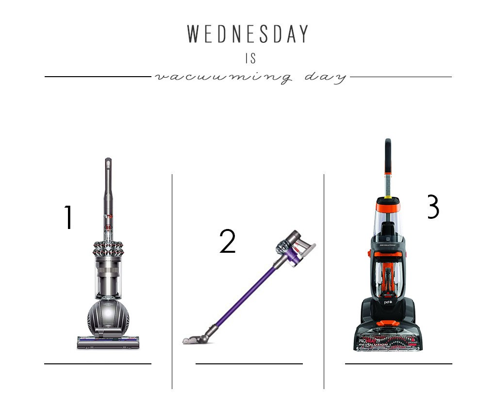 Wednesday is Vacuuming Day