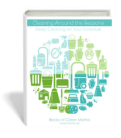 cleaning_around_the_seasons_book2covermini