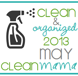 cleanandorganizedmaybutton2013