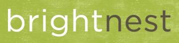 brightnest_logo_on_texture
