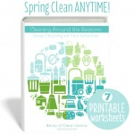 CLEANING AROUND THE SEASONS ebook
