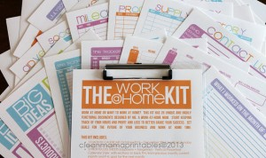 2014 Work @ Home Kit - Clean Mama