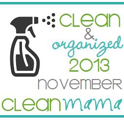 cleanandorganizednovemberbutton2013