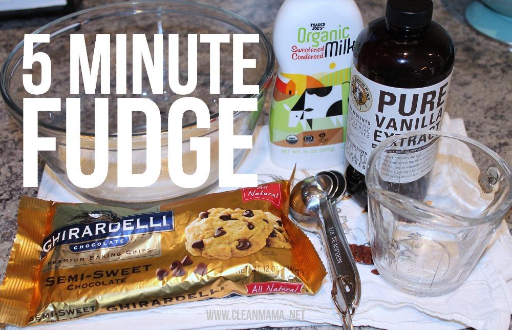 5 Minute Fudge via Clean Mama