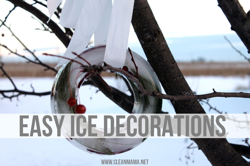 Outdoor Ice Decorations via Clean Mama