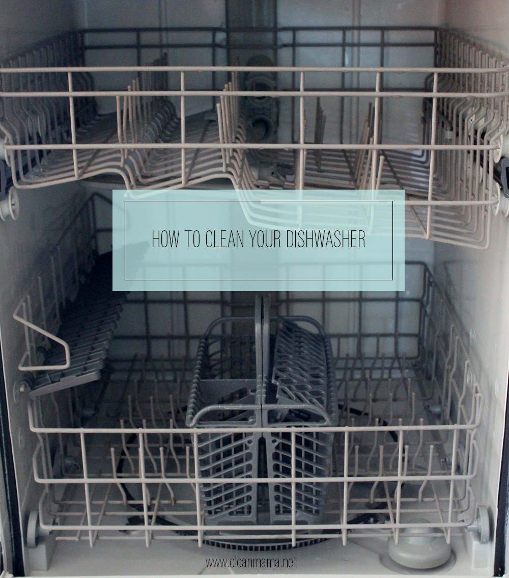 How To Clean A Dishwasher Drain How To Clean Your Dishwasher Clean Mama