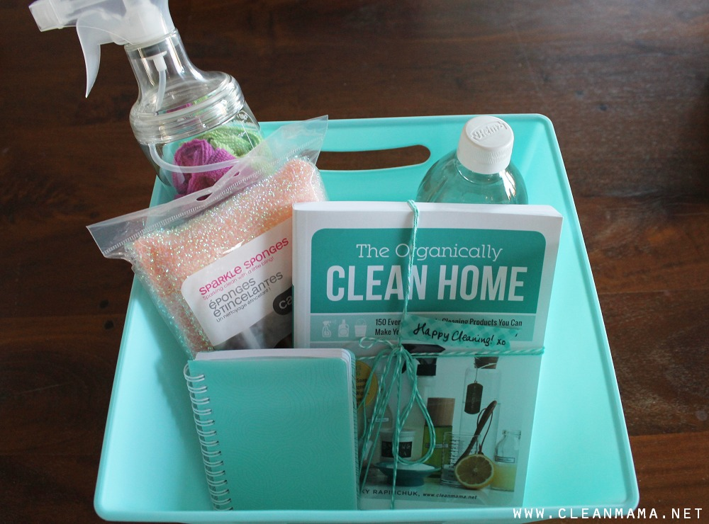 Great Ideas for Hostess Gift via Clean Mama