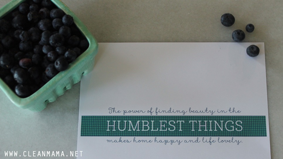 Quote for the Kitchen Sink - July Homekeeping Society - via Clean Mama