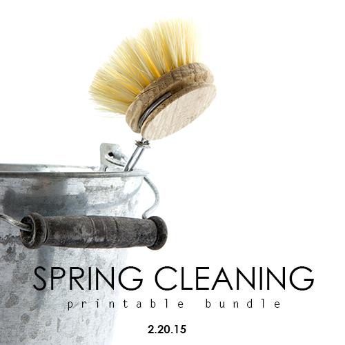 Sneak Peek : Spring Cleaning Bundle