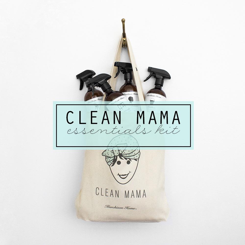 CleanMamaEssentialKit-Clean Mama