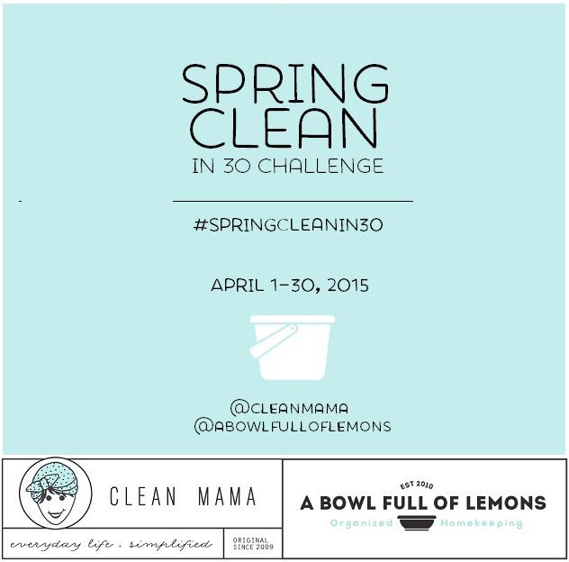 Spring Clean in 30 Challenge Sneak Peek