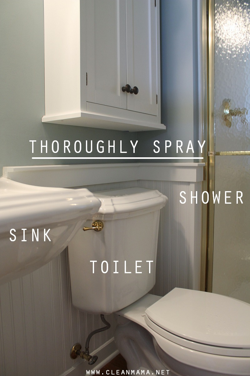 Thoroughly spray sink, toilet, shower via Clean Mama
