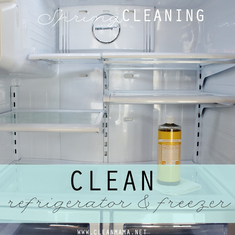 Day 12 Clean Refrigerator and Freezer via Clean Mama