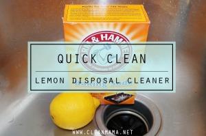 Quick Clean - Lemon Disposal Cleaner via Clean Mama