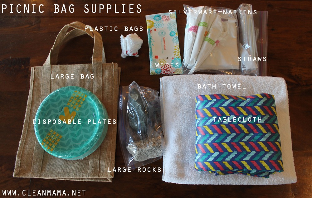 Picnic Bag Supplies via Clean Mama