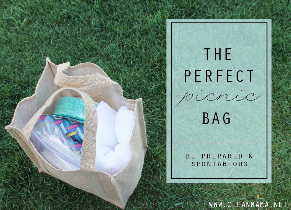 The Perfect Picnic Bag via Clean Mama