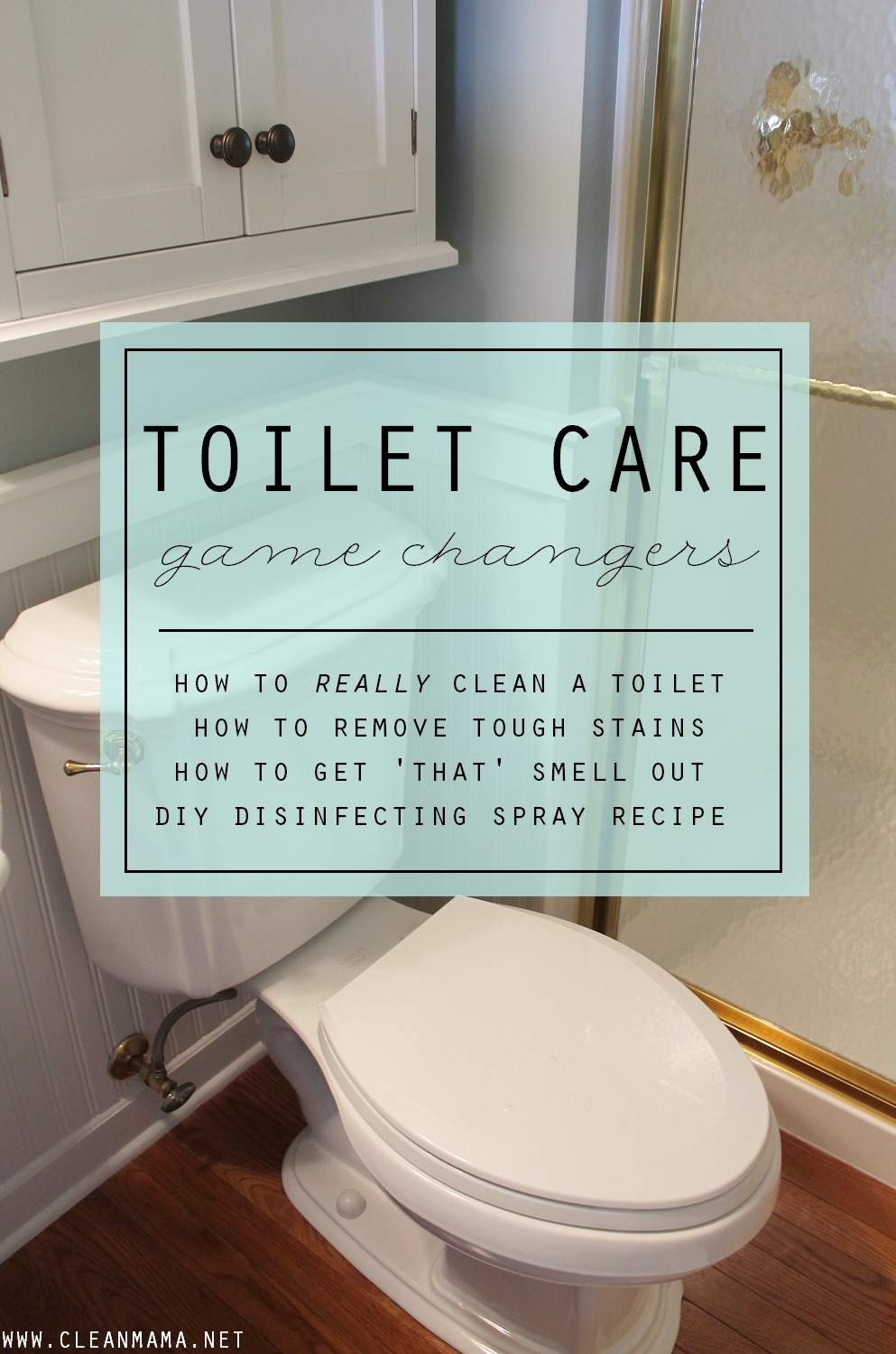 Toilet Care Game Changers via Clean Mama