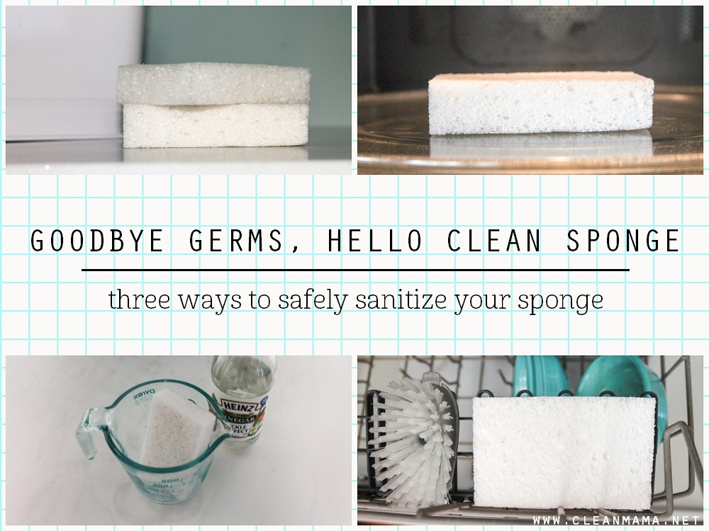 Goodbye Germs, Hello Clean Sponge - three ways to safely sanitize your sponge via Clean Mama
