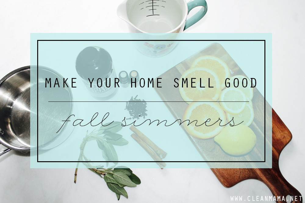 Make Your Home Smell Good - Fall Simmers via Clean Mama