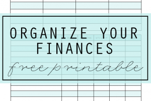FREE printable Bill + Payment Organizer to Help you Organize Your Finances via Clean Mama