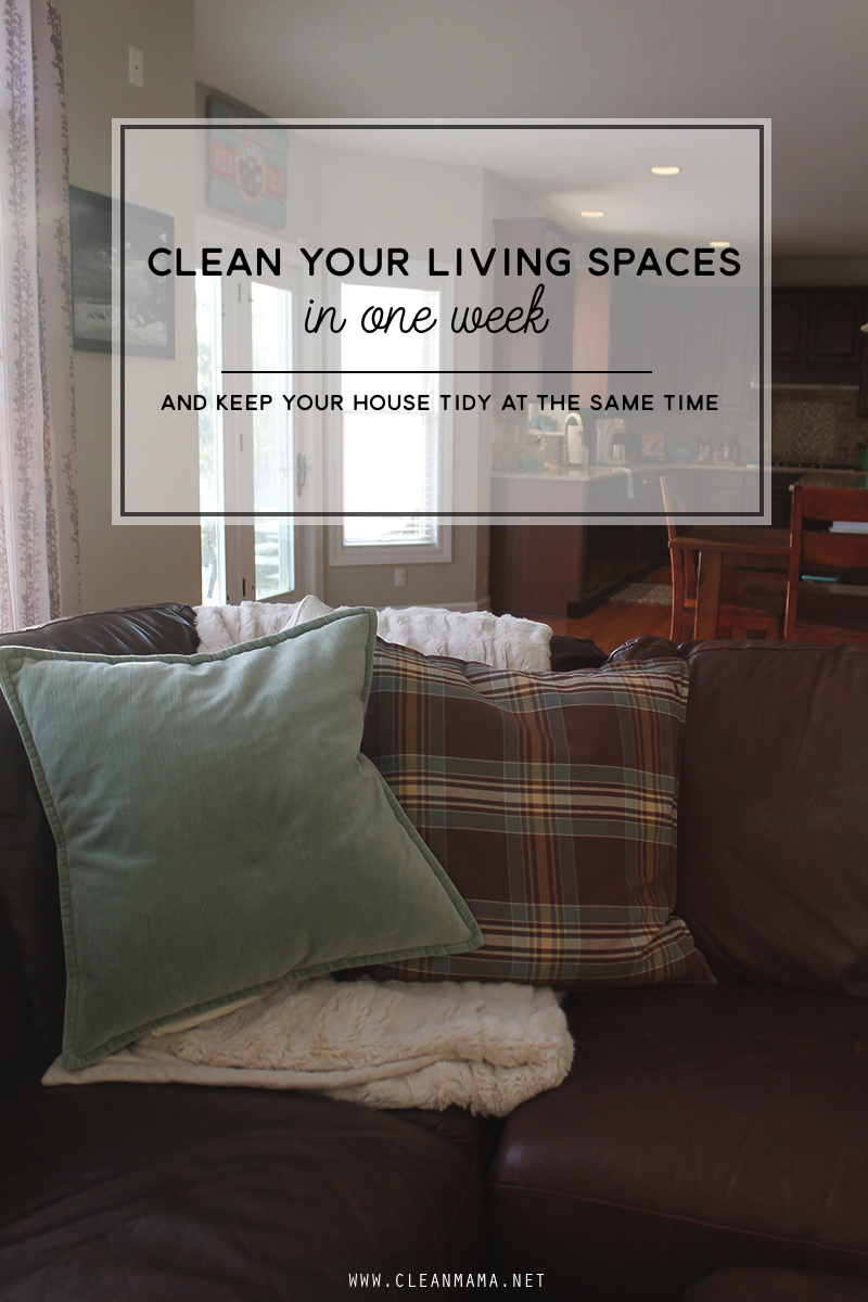 Come Clean Challenge – Week 2 – Living Spaces