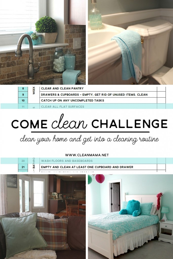 Come Clean Challenge Wrap-Up