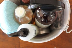Dusting and Furniture Care Essentials - Clean Mama