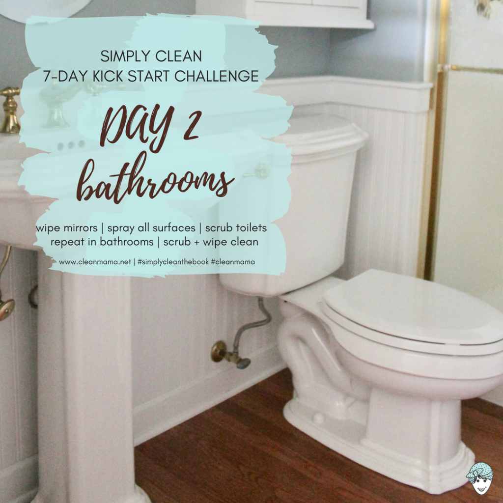 DAY The Day SIMPLY CLEAN Kick Start Challenge Clean Mama - Clean my bathroom