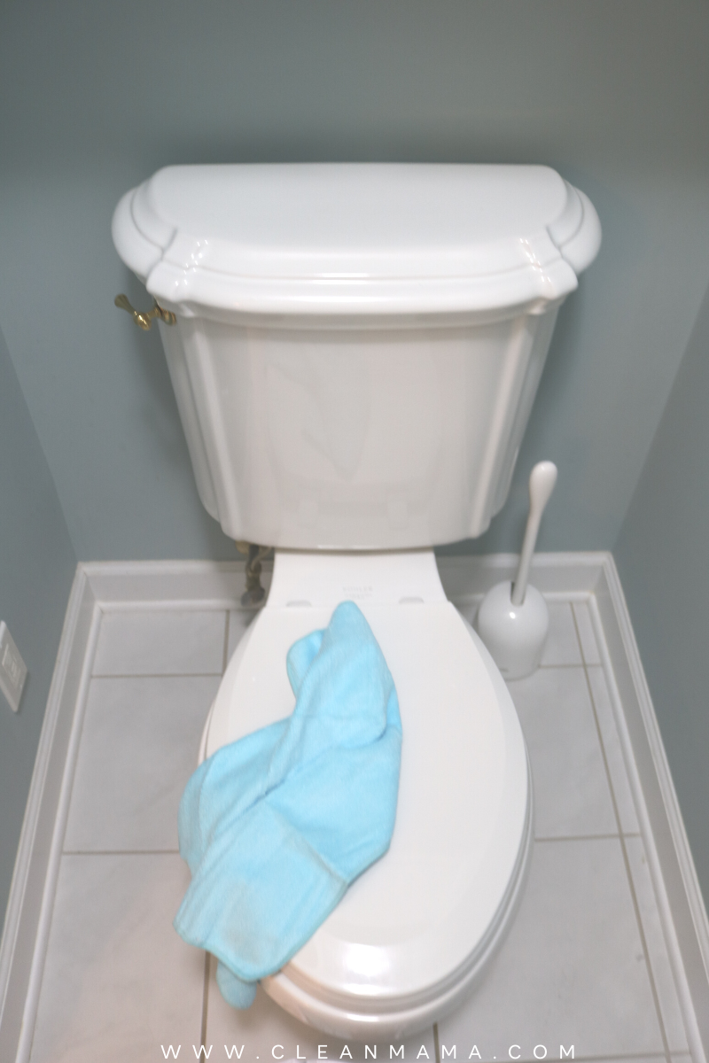 Marvelous How To Naturally Clean A Toilet Clean Mama Pabps2019 Chair Design Images Pabps2019Com